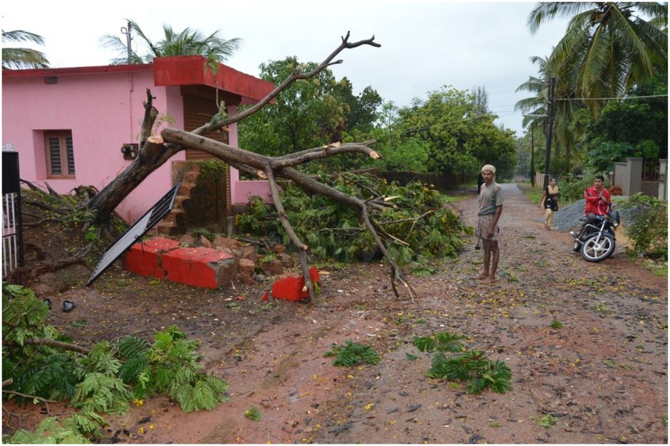 Tree uprooted and destroyed compound walls in bhatkal