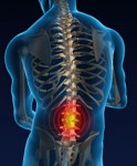 Spine injuries not the disease of the aged any more